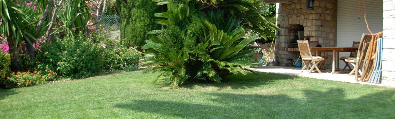 Remise en état de jardin  <br> Alpes Maritimes (06)