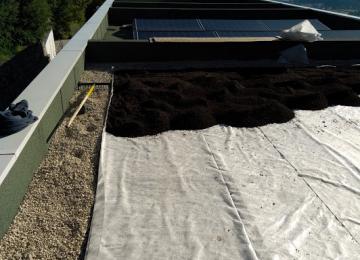 Installation et vente de toiture végétalisée Mandelieu - 06 - Clean Jardin