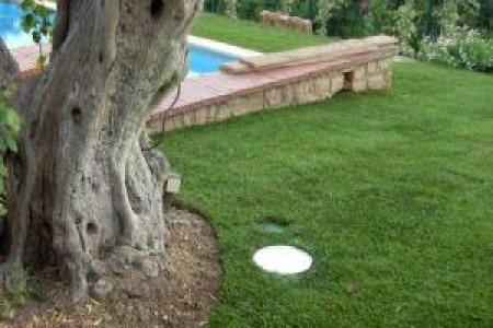 Aménagement de jardin à Antibes (06)