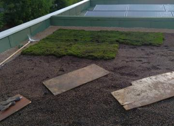 Création de toiture végétalisée par Clean Jardin à Mandelieu - 06