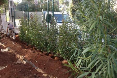 Installation d'une nouvelle clôture pour une maison du Cap d'Antibes (06)
