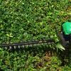 Elagage taille de haie et broussailles - 06 - Clean Jardin