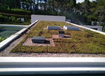 Mise en place du sédum sur la toiture