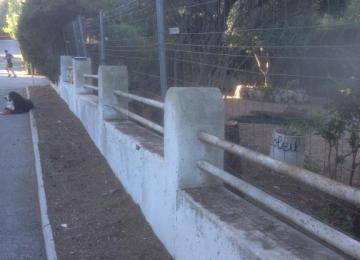 Protection de la clôture de terrain Cap d'Antibes - Clean Jardin 06