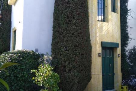 Taille des arbres et entretien de jardin à Biot (06)