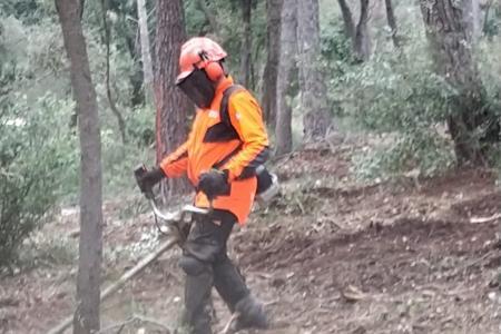 Débroussaillage en forêt Domaniale à Mougins avec Eurotrack (06)