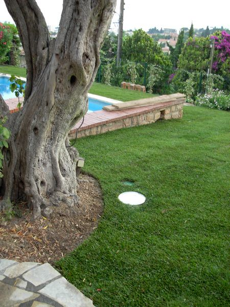 Am nagement de jardin antibes for Implantation jardin paysager